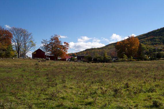 Pretty farm
