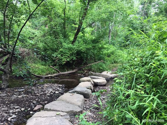 Large stepping stones over a creek