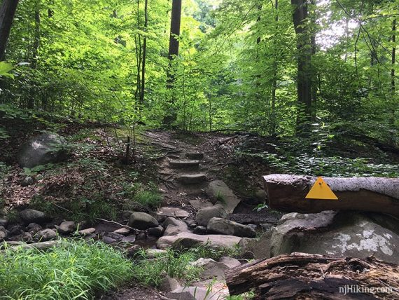 Yellow triangle marker on a rocky trail