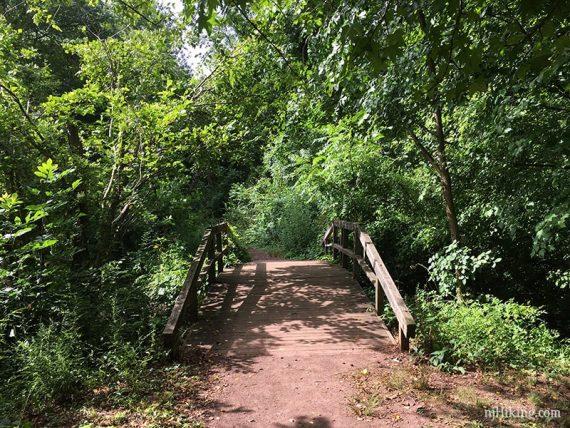 Wide bridge with green foliage around