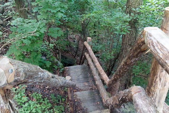 Bruin Path