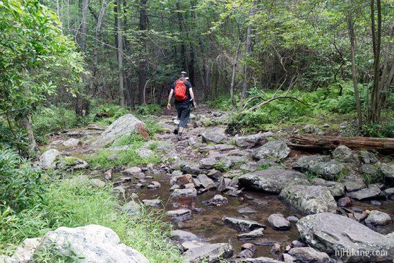 Stream rock hop on the Appalachian Trail