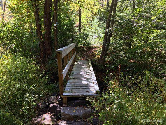 Bridge near the end
