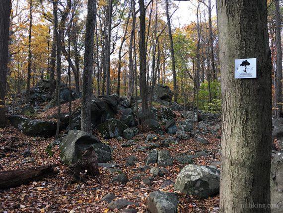 Ridge Trail marker