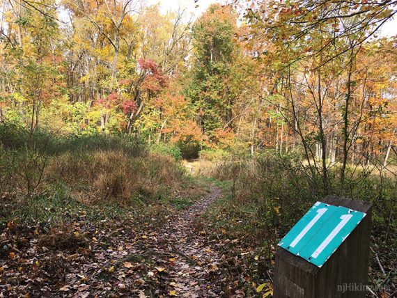 Marker 11, Ridge Trail