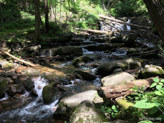 Cascades along Dunnfield Creek
