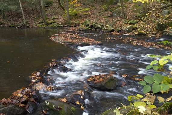 Stream rippling over rocks