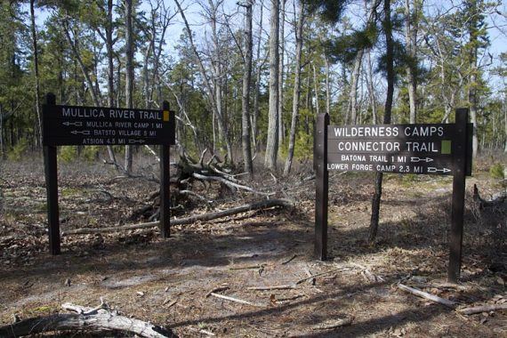 Mullica River and Wilderness Camps signs