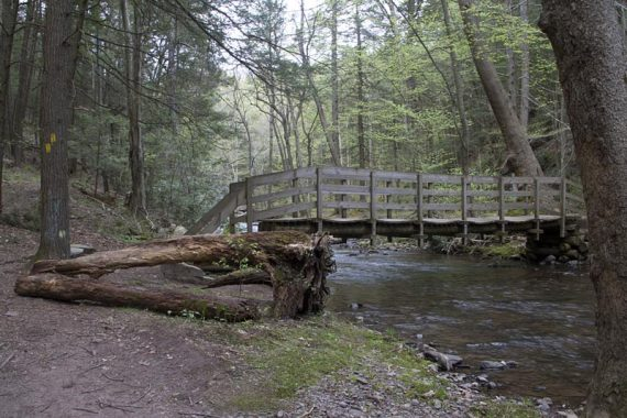 Van Campens Glen Trail