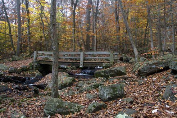 Wooden bridge over water cascades