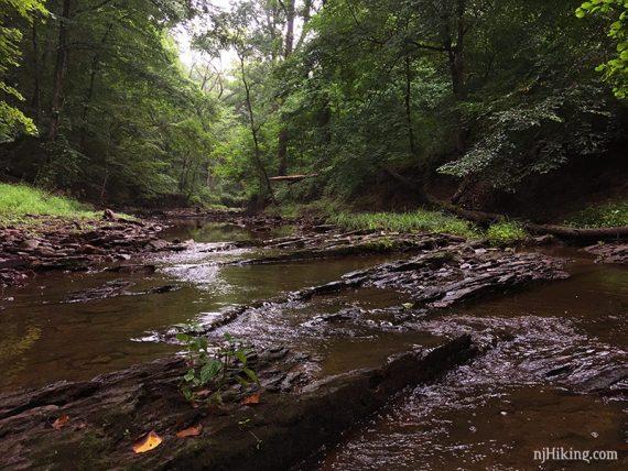 Fiddlers Creek