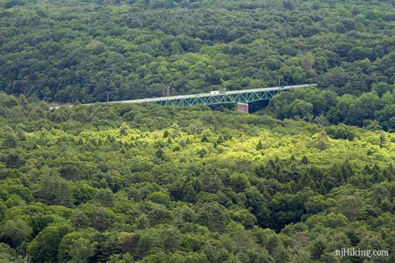 Bridge surrounded by forest
