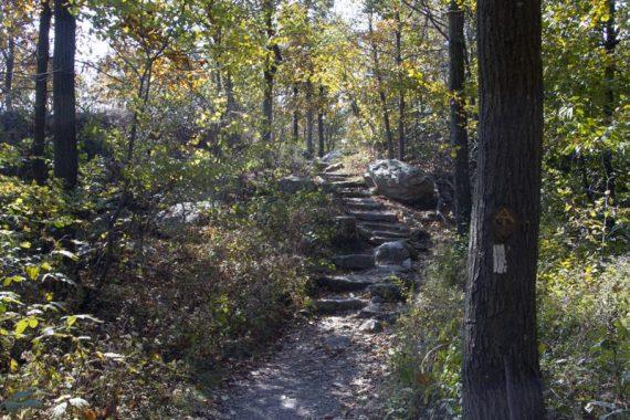 Appalachian Trail near the Sunrise Mountain parking lot