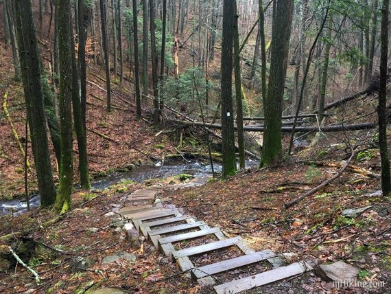Wooden steps on a downhill trail
