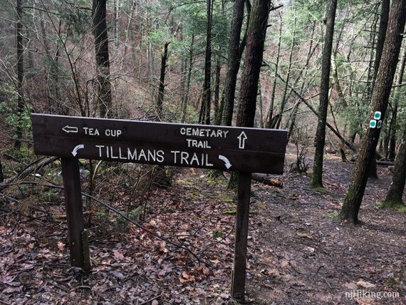 Trail sign for tea cup and cemetery trail