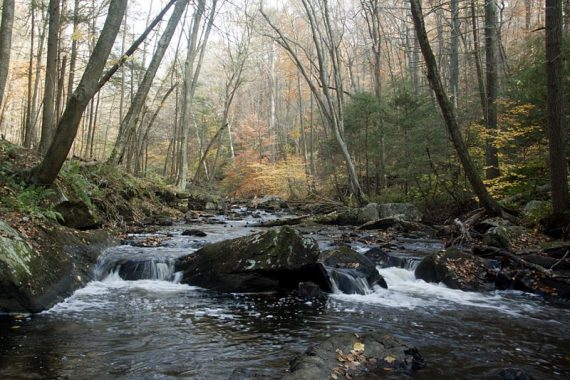 Black River flowing over rocks