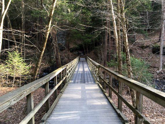Wooden boardwalk trail