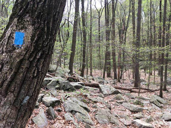 Rocky Falling Waters trail