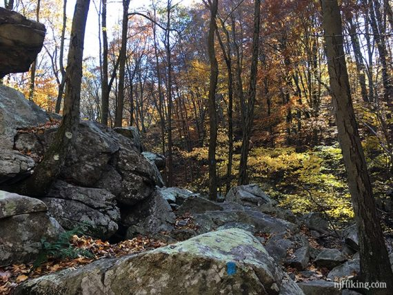 Large boulders covering a trail