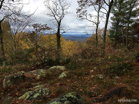 Looking towards PA from Unmarked Trail