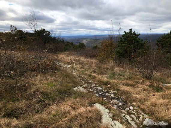 Blue Mountain summit, looking south