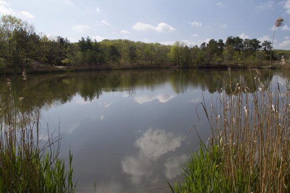 Perrine Pond, on the BLUE trail