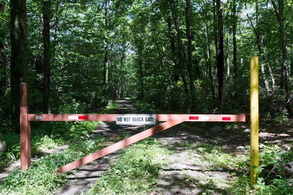 Gate across a woods road
