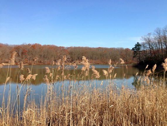 Hooks Creek Lake, off the YELLOW trail