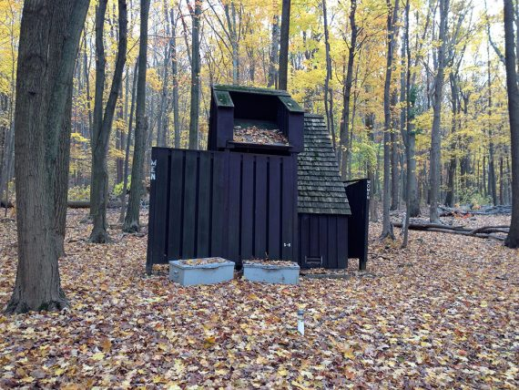 Rustic latrines along the Campground Trail