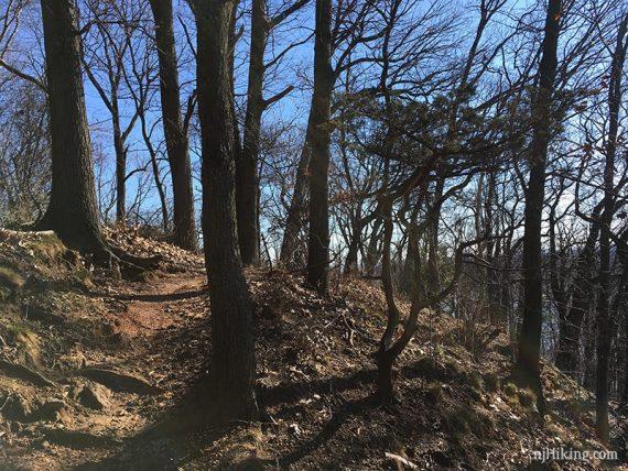 Rocky Point Trail