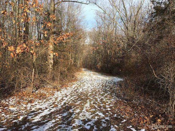 Company Trail