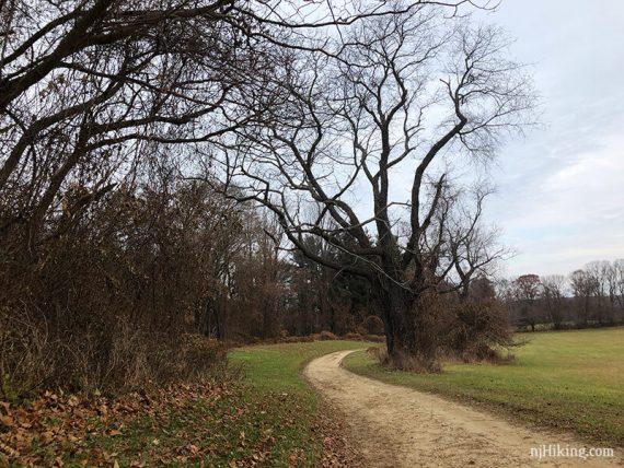 Bayonet Farm BLUE Trail