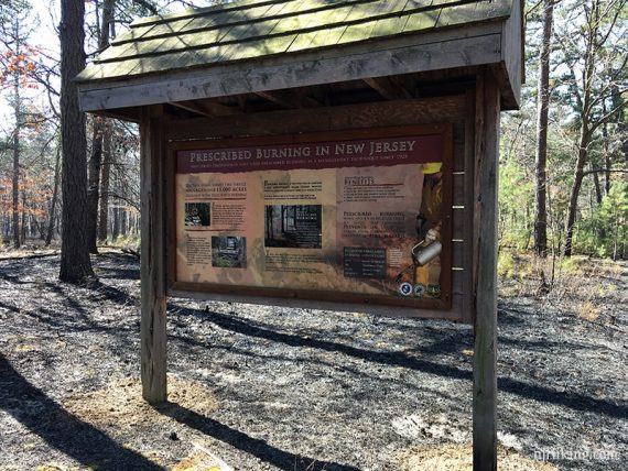 Display board about prescribed burning in New Jersey