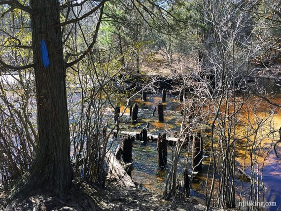 Bridge remains on Stephens Creek