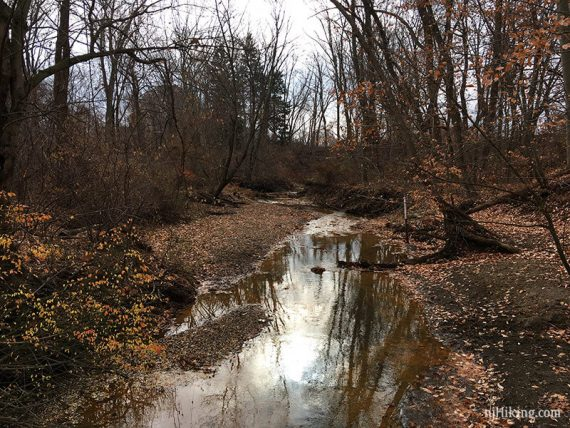 Ramanessin Brook