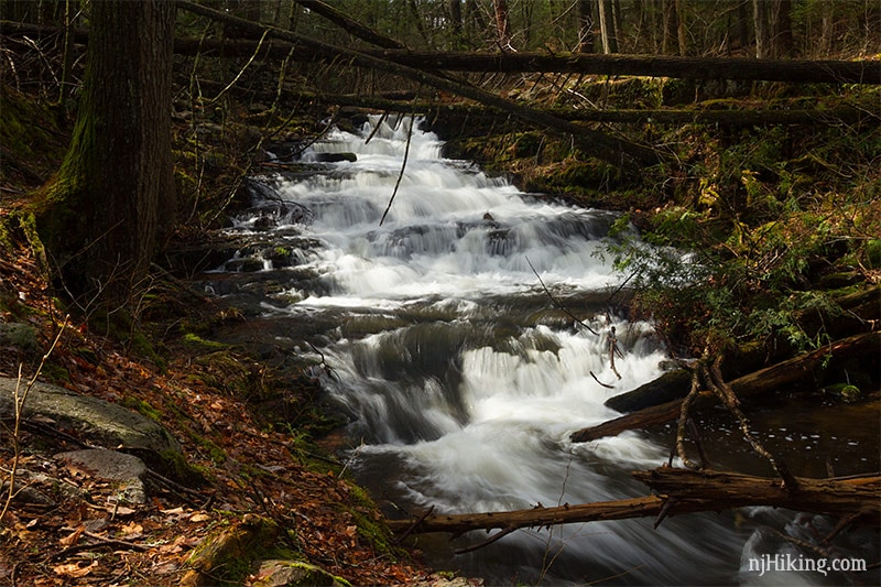 Stony Brook Falls in Sussex County offers two more waterfall hikes in nj