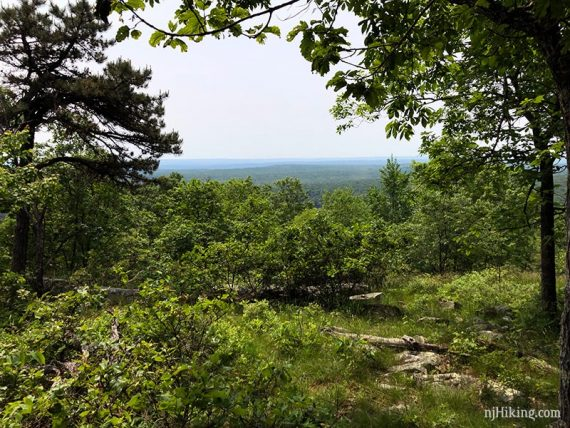 First limited view on Appalachian Trail