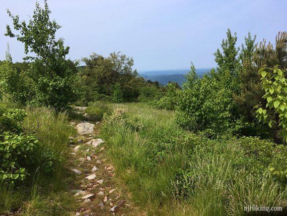 Appalachian Trail on Blue Mountain, looking south.