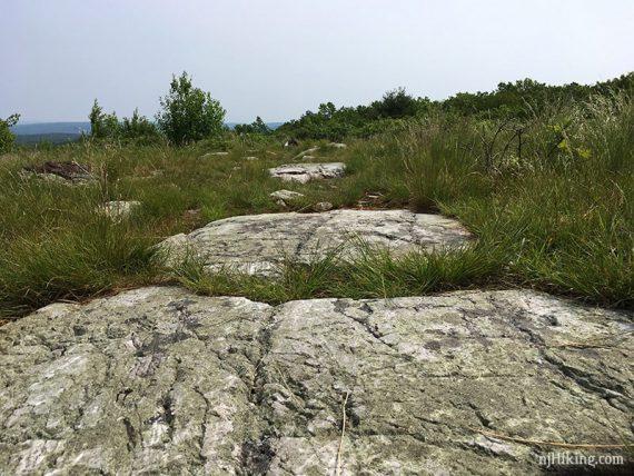 Rock slabs on trail