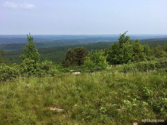View from Blue Mountain