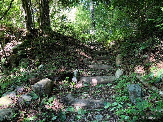 Steps placed on trail