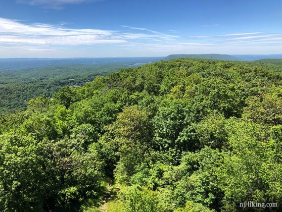 View from the Catfish Fire Tower south