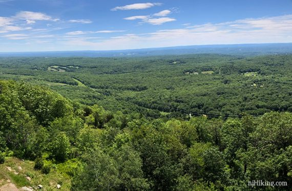 View over green foliage and farms in New Jersey