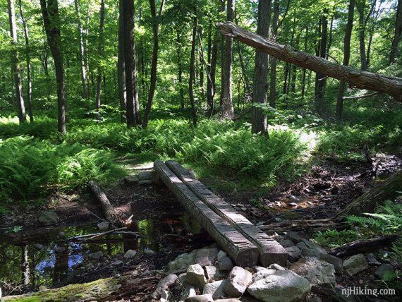 Log bridge on Coppermine Trail