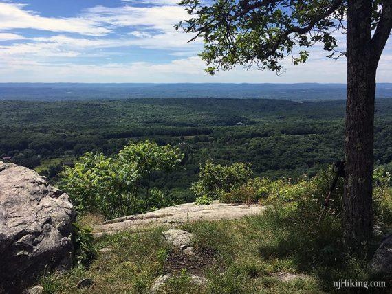 Shady break spot on the Appalachian Trail