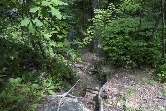 Steep section of trail with rope