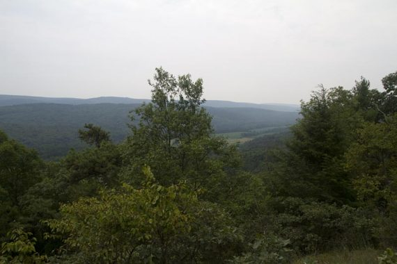 View on Tumbling Waters trail