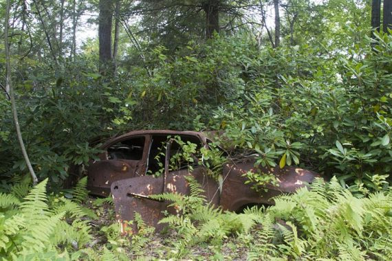 It's not hiking in Jersey until there is a abandoned car along the trail.