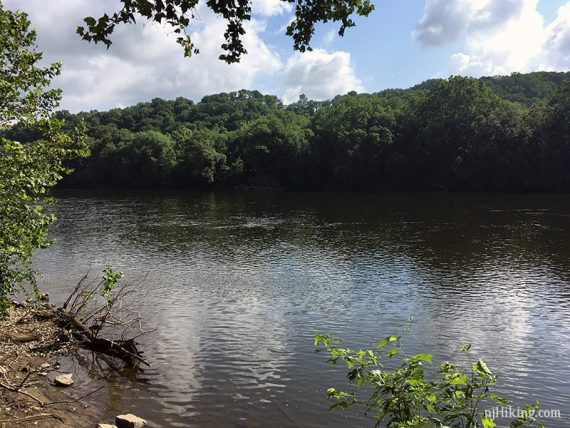 View of the Delaware River from Theodore Roosevelt Rec Area