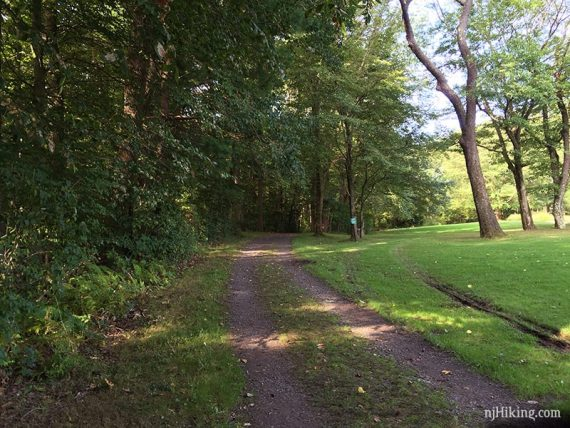 Trolley Track trail in Institute Woods